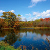 Autumn scenery jigsaw