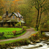 House by the River Jigsaw
